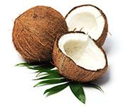 by-cosmetics Cocos Nucifera Shell