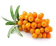 by-cosmetics Sea Buckthorn