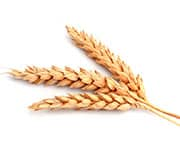 by-cosmetics Wheat