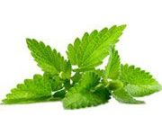 by-cosmetics Mentha Peppermint